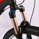 Vélo de montagne Spécial-Shaped d'Acera M390 27-Speed de bâti de tube d'alliage d'aluminium