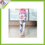Caneleiras secas rápidas sem emenda respiráveis confortáveis da ioga da aptidão para mulheres