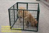 販売(XMR101)のためのドアによって使用される携帯用鋼鉄犬のケージペットケージ