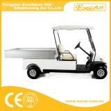 2 carros da companhia de eletricidade de Seater para a venda