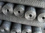 Anping ha galvanizzato il collegare di pollo esagonale della rete metallica/rete fissa del pollo ricoperta PVC