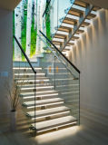 Escadaria de madeira do diodo emissor de luz do passo dos trilhos de vidro modernos das escadas