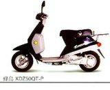 XDZ50QT-P Bee Bird moto