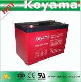 Batterie profonde supérieure DC100-12 du cycle AGM de la qualité 12V100ah