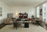 Nuova mobilia italiana del sofà di stile (D-68)