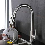 SUS304 het roestvrij staal Pullable draait de Tapkraan van de Keuken van Twee Functies