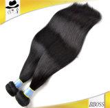 Cabelo não processado do cabelo brasileiro (KBL-BH)