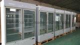 Refrigerador de cristal del congelador de la visualización de la puerta libre de la situación 2 del enchufe