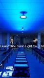 Van de LEIDENE van Vello Licht van het Stadium van de Was van de Muur RGBW Kleur van de Stad het Openlucht (LEIDENE Stad Color500)