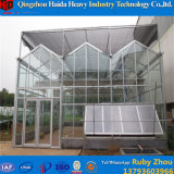 Hydroponic System Factory Price Knell Greenhouse for Aquaponics