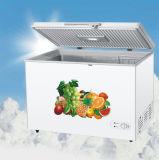 Il manuale disgela il congelatore profondo della cassa del singolo portello