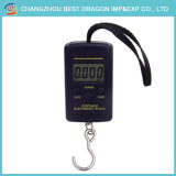 Backlit Electric Weight Scale digitally Fishing Hanging Scale 40kg/10g