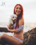 Biquínis Ombro off set Praia feminina mulheres calções de banho Swimsuit