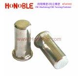 L'écrou rivet aveugle en acier inoxydable à plat/six pans de l'écrou de rivet