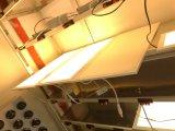 Indicatore luminoso di comitato di alluminio ultrasottile superiore di Dimmable LED del triac con 600X300