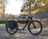 향수 바닷가 함 발동기 달린 자전거 작풍 250W/500W/750W/1000W 고전적인 전기 자전거 또는 Retro 전기 Bike/E 자전거 또는 단속기 E 자전거 또는 포도 수확 Pedelec En15194 의 세륨