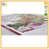 Impresión colorida de encargo profesional del compartimiento mensual