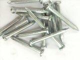 高力堅くされたステンレス鋼のコンクリートの釘