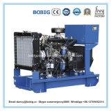 Portable diesel de générateur de 8kw 10kVA avec l'engine de Weifang Ricardo