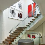 Frameless 스테인리스 층계 유리제 방책 가격