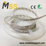 Fita LED flexível 2835 SMD luz com 60 LEDs/M e única linha
