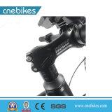 고품질 중국 공장 전기 뚱뚱한 자전거 26inch 전기 자전거