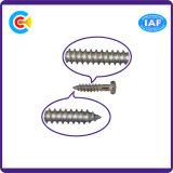 Aço de carbono de DIN/ANSI/BS/JIS/parafuso de batida chave de fenda transversal Stainless-Steel para a estrada de ferro do edifício