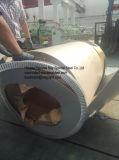Las bobinas del acero inoxidable/las tiras más baratas de las hojas (SUS 201, 202, 301, 304, 304L, 309S, 310S, 321, 316, 316L, 321, 410, 409L, 430 del grado)