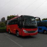 Eindeckiger 8.6m Dieselpassagier des touristischen Bus-31-37seats