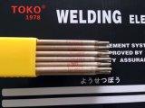 De Elektroden van het lassen E309-16 E309L E309LSI