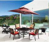 /Rattan extérieur/présidence de fonte d'aluminium de meubles hôtel de jardin/patio et Tableau de barbecue mis (HS 3190C et HS 6125DT)