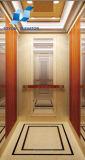 Lift van de Passagier van Toyon de Commerciële voor de Lift van het Huis