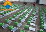 Sistema de energia solar da HOME do painel solar da fora-Grade 500W de China Pwerful
