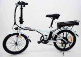 Der 20 Zoll-Stahl scherzt Fahrrad