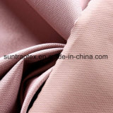 600d Coated Oxford Fabric with W/R for Bag