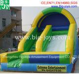 膨脹可能なスライド、プール(DJWSMD8000019)が付いている巨大で膨脹可能な水スライド
