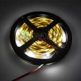 Venta caliente SMD2835 TIRA DE LEDS DE 12V de 3 a 5 de la vida laboral