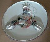 Cuerpo Aluiminum Die-Casting Jardín de Luz LED con 3 años de garantía