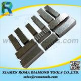 Segmenti del diamante di alta qualità per arenaria/calcare/marmo/granito/varia molatura di pietra