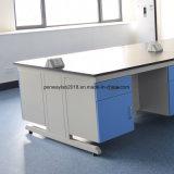 Paillasses de laboratoire Armoire en acier de mobilier de laboratoire