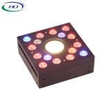 DIY-1 il modulo LED si sviluppa chiaro per la serra