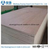 家具または装飾のための安い価格Bintangor/Okoumeの合板