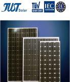 comitato solare della Germania di energia verde 160W mono da Qualitied Factory
