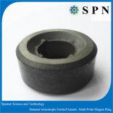 Il magnete duro /Ceramic del ferrito ha sinterizzato l'anello multipolare del magnete di /Anisotropic del magnete
