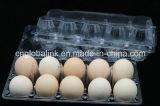 使い捨て可能なペットプラスチックは皿10の穴に卵を投げつける