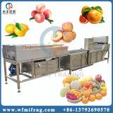 洗浄している高圧空気泡野菜およびフルーツ機械を洗う