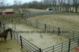 パネルを囲っている電流を通された馬