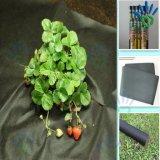 PP Spunbond 딸기 보호를 위한 비 길쌈된 잡초 방제 직물