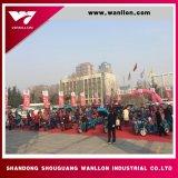 motorino del triciclo del camion del carico di 150cc 175cc 200cc 250cc grande fatto in Cina