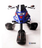 Cheap Price 2017 Snowmobile Snowscooter